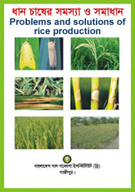 Problems and solutions in rice production