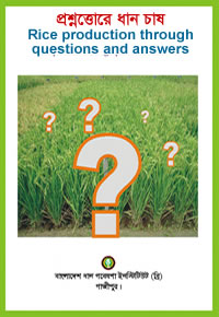 Rice Production through Questions and Answers