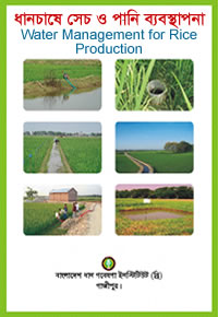 Water management in rice production