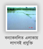 Rice technology in flood area