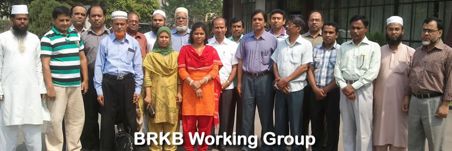 BRKB Working Group