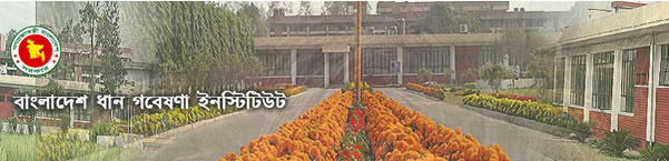 Bangladesh Rice Research Institute